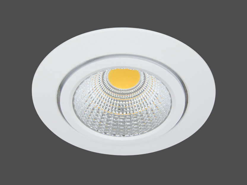 30W LED Downlight - 4.500 K - 55° - kardanisch
